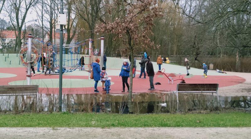 park wodziczki kaluza 3  800x445 - Poznań: W parku Wodziczki znów jest kałuża. I drzewa z napisami