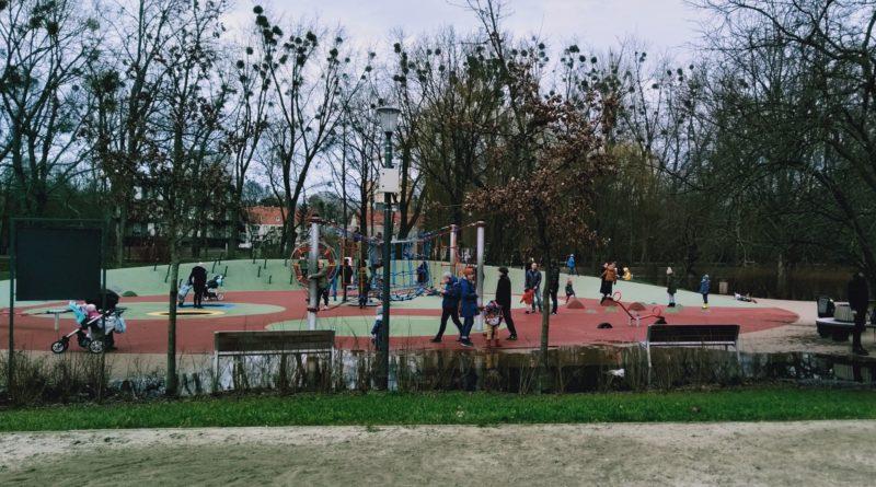 park wodziczki kaluza 4  800x445 - Poznań: W parku Wodziczki znów jest kałuża. I drzewa z napisami
