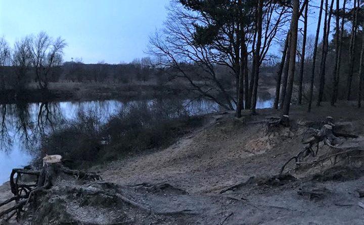 """staw mlynski 2 720x445 - Poznań: Kolejne drzewa wycięte, mieszkańcy oburzeni. """"Dlaczego nikt nas nie powiadomił?"""""""