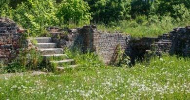 Kostrzyn nad Odrą, czyli kostrzyńskie Pompeje
