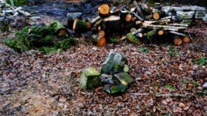 macewy 1 300x169 - Poznań: Macewy wyłowione z jeziora Rusałka leżą porzucone na trawie