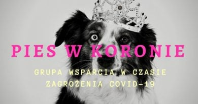 Pies w koronie fot. FB