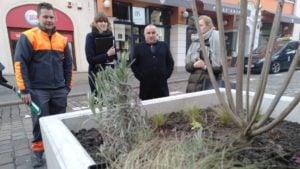 zielen w miescie 5 300x169 - Poznań: Więcej zieleni w centrum miasta