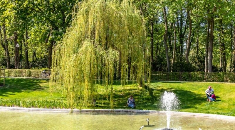 Park Cytadela fontanna w ogrodzie kwiatowym Mewy fot. Sławek Wąchała