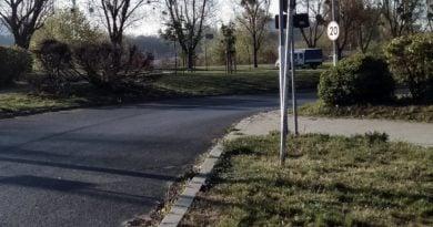 koszenie trwnikow 3 390x205 - Poznań: ZDM informuje - kosimy trawę!
