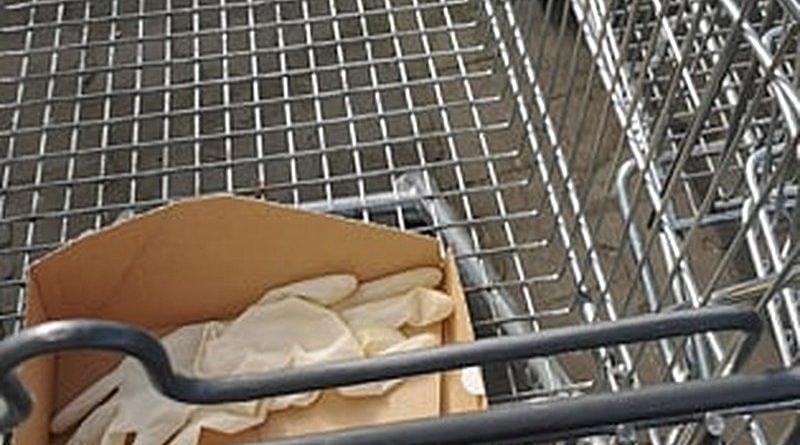 porzucone rękawiczki 1 fot. S. Wąchała