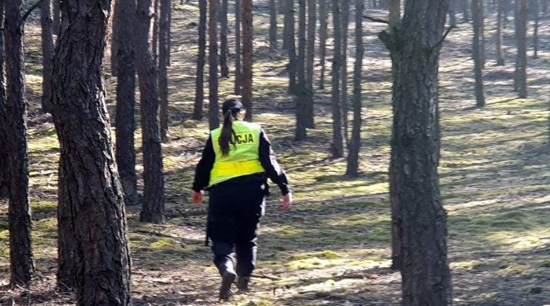Złotów: Grzybiarze zaginęli w lesie