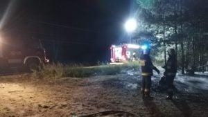 pozar 2 fot. osp golina 300x169 - Konin: Pożar lasu w Kawnicach. Znów podpalenie!