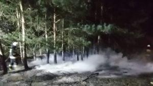 pozar fot. osp golina 300x169 - Konin: Pożar lasu w Kawnicach. Znów podpalenie!