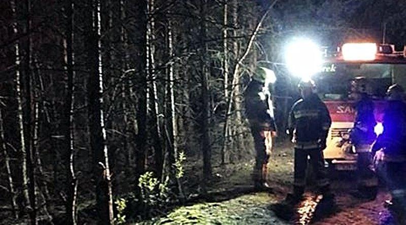 pożar lasu 2 fot. OSP Golina
