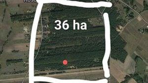 pozar lasu fot. osp golina 1 300x169 - Konin: Kolejny pożar pod Goliną!