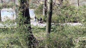 rusalka las 9 300x169 - Poznań: Lasy i parki otwarte!