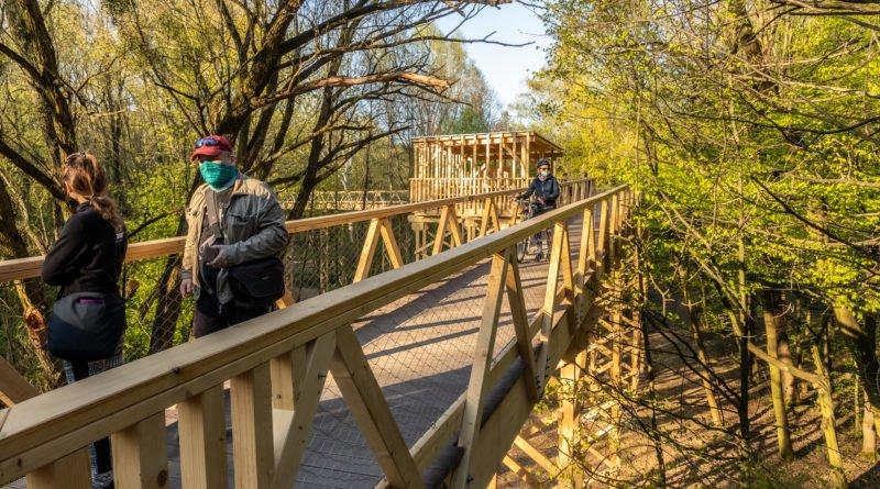 sciezka w koronach drzew poznan fot. slawek wachala 6760 800x445 - Poznań: Ścieżka w koronach drzew zaprasza!