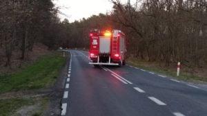 wypadek 4 fot. osp dabrowka lesna 300x169 - Oborniki: Samochód dachował między Dąbrówką Leśną a Lipą