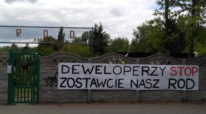 Banner ROD fot. Zielona Fala