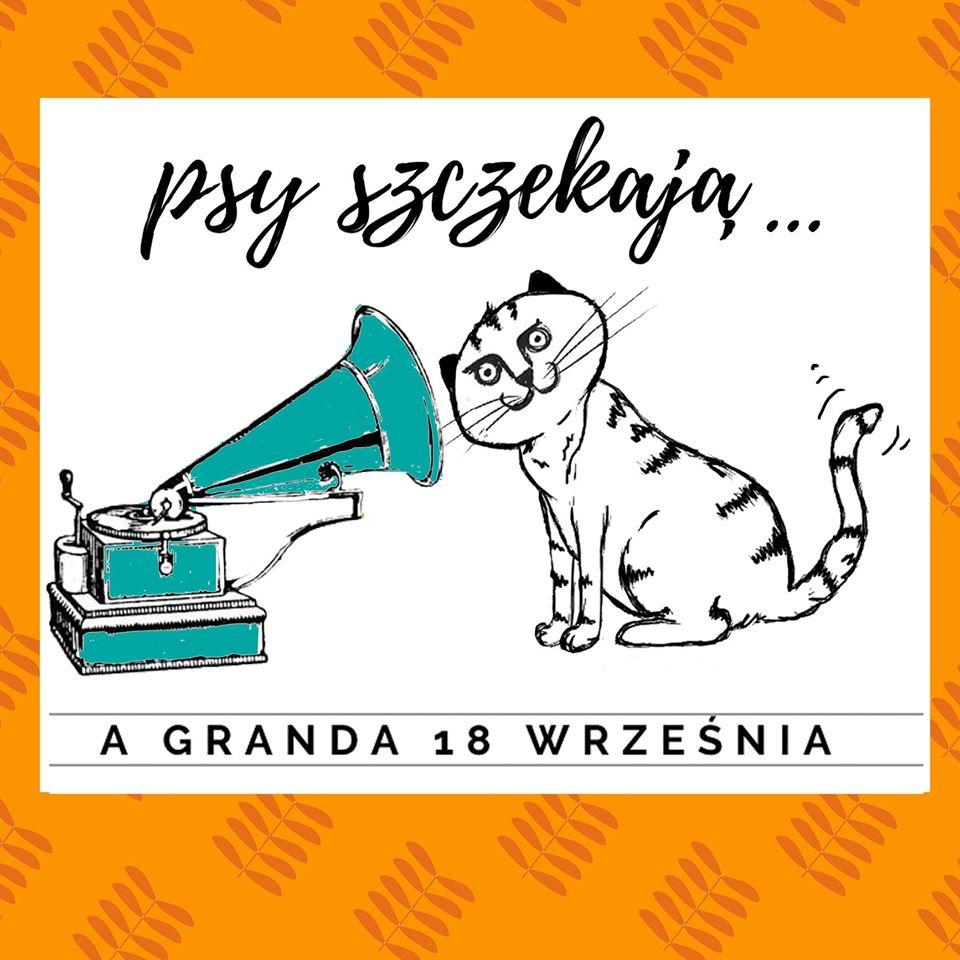 granda 2020 fot. granda - Poznań: 18 września rozpoczyna się Granda!
