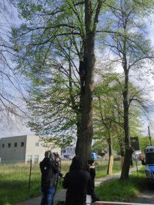 lipy 1 fot. k. adamska 225x300 - Suchy Las: Aktywiści przypięli się do lip. Żądają przyjazdu starosty