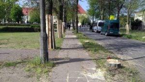 lipy 12 fot. k. adamska 300x169 - Suchy Las: Aktywiści przypięli się do lip. Żądają przyjazdu starosty