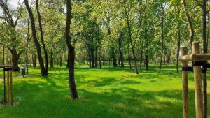 park browarna 2 fot. ump 300x169 - Poznań: Mamy nowy park. Przy Browarnej