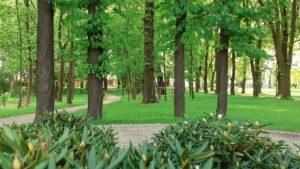 park browarna fot. ump 300x169 - Poznań: Mamy nowy park. Przy Browarnej
