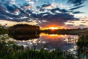 park krajobrazowy promno fot. slawek wachala 0315 300x200 - Park Krajobrazowy Promno: wycieczka w inny świat