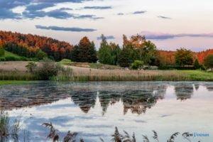park krajobrazowy promno fot. slawek wachala 0324 300x200 - Park Krajobrazowy Promno: wycieczka w inny świat