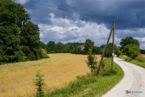 park krajobrazowy promno fot. slawek wachala 08385 300x201 - Park Krajobrazowy Promno: wycieczka w inny świat