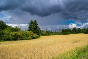 park krajobrazowy promno fot. slawek wachala 08393 300x201 - Park Krajobrazowy Promno: wycieczka w inny świat