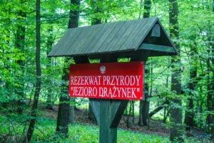 park krajobrazowy promno fot. slawek wachala 08426 300x201 - Park Krajobrazowy Promno: wycieczka w inny świat