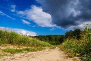 park krajobrazowy promno fot. slawek wachala 08461 300x201 - Park Krajobrazowy Promno: wycieczka w inny świat