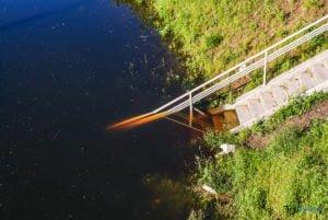 powodz maj 2010 27 30 fot. slawek wachala 05477 300x201 - Poznań: Ostatnia wielka powódź - to już 10 lat!
