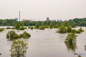 powodz maj 2010 27 30 fot. slawek wachala 05735 300x201 - Poznań: Ostatnia wielka powódź - to już 10 lat!