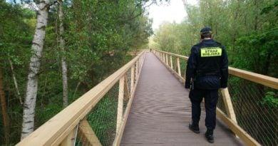 ścieżka w koronach drzew fot, SMMP