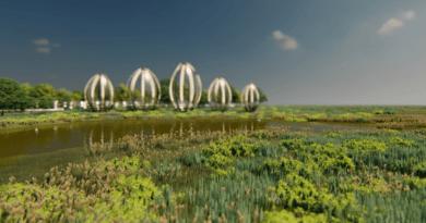 Wizualizacja fragmentu projektu ekologicznego