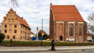 ostrow tumski drzewa fot. s. wachala 300x169 - Poznań: Miasto tajemniczych zniknięć drzew