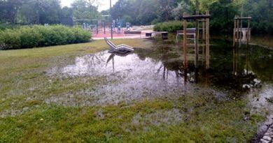 park wodziczki 2 390x205 - Poznań: Park Wodziczki znowu pod wodą