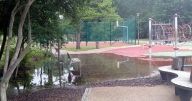 park wodziczki 6 390x205 - Poznań: Czy będą zbiorniki retencyjne w poznańskich parkach?