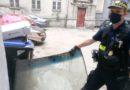 Poznań: Strzałowa – bałagan czy… brak organizacji?