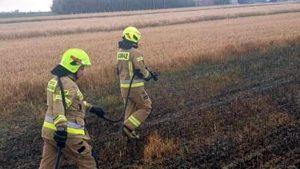 pozar fot. osp golina4 300x169 - Golina: Pożar pola ze zboża w Bobrowie
