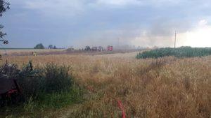 pozar fot. osp granowo4 300x169 - Buk: Spłonęło zboże na polu. Jedna osoba poszkodowana