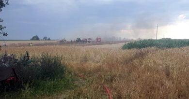 Leszno: Pożar zboża na polu w Piotrkowicach