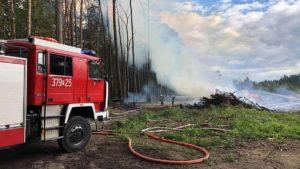 pozar lasu fot. osp chorzen 300x169 - Konin: Pożar w Puszczy Bieniszewskiej. Kolejne podpalenie?