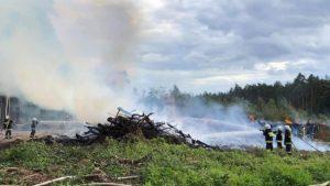 pozar lasu fot. osp chorzen2 300x169 - Konin: Pożar w Puszczy Bieniszewskiej. Kolejne podpalenie?