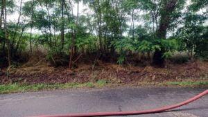 pozar trawy fot. osp tarnowo podgorne2 300x169 - Tarnowo Podgórne: Pożar w Gaju Wielkim