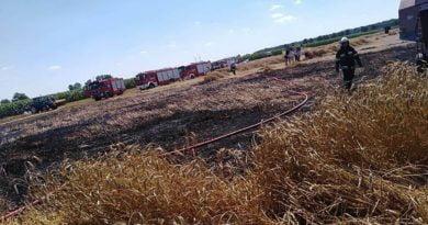 pozar zboza fot. osp pogorzela2 390x205 - Leszno: Pożar na polu w Kaczkowie