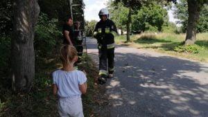 ratowanie kotka fot. osp gultowy 300x169 - Siedlec: Strażacy z Gułtów uratowali kotka