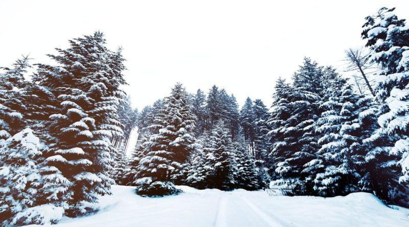 Snieg fot. pixabay