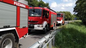 wypadek fot. osp golina3 300x169 - Golina: Samochód dachował i... wylądował w kanale