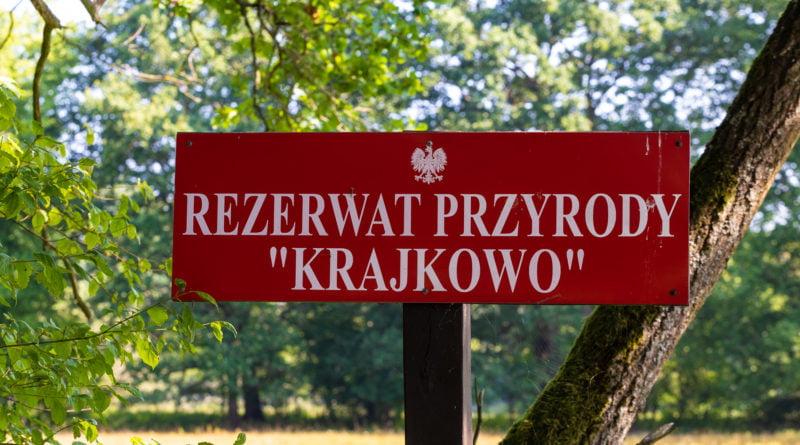 Krajkowo Rezerwat Przyrody fot. Sławek Wąchała