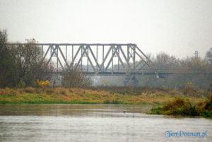 most stobnica braczewo fot. slawek wachala  300x201 - Wielkopolska: Czy filmowcy zamiast mostu w Pilchowicach zburzą most w Stobnicy?